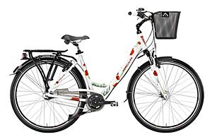 rafael arcángel alvarez :: fahrradgeschäft